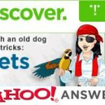 Yahoo! Answers for Niche Research