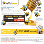 Traffic Swarm Review – Is Traffic Swarm Any Good?