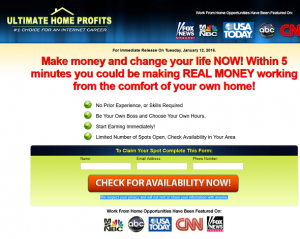 ultimate home profits