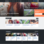Dividend Theme from MyThemeShop Review